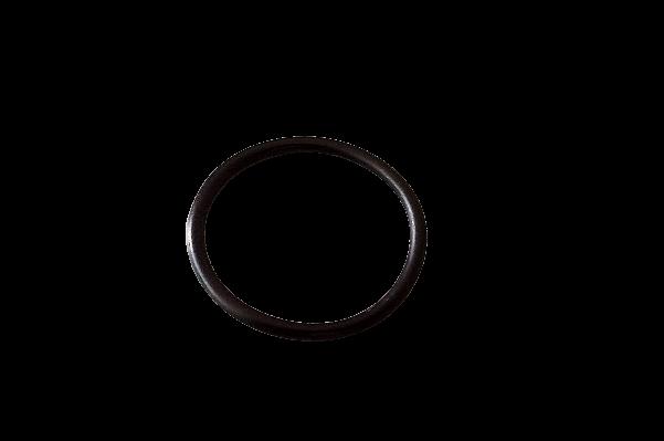 O-Ring-removebg-preview