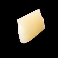 Striscia del paraurti in Nylon per motoseghe Stihl | Ricambi Stihl | Duedistore